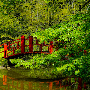 Botanical Gardens - Journey Group-18.jpg