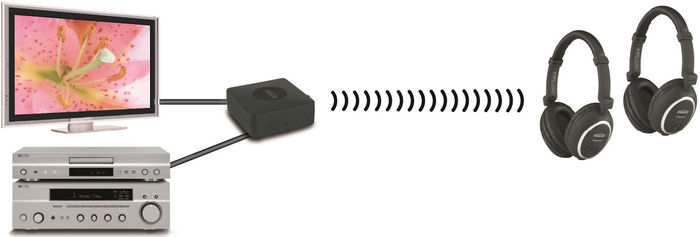Transmetteur audio sans fil Bluetooth Marmitek BoomBoom 55
