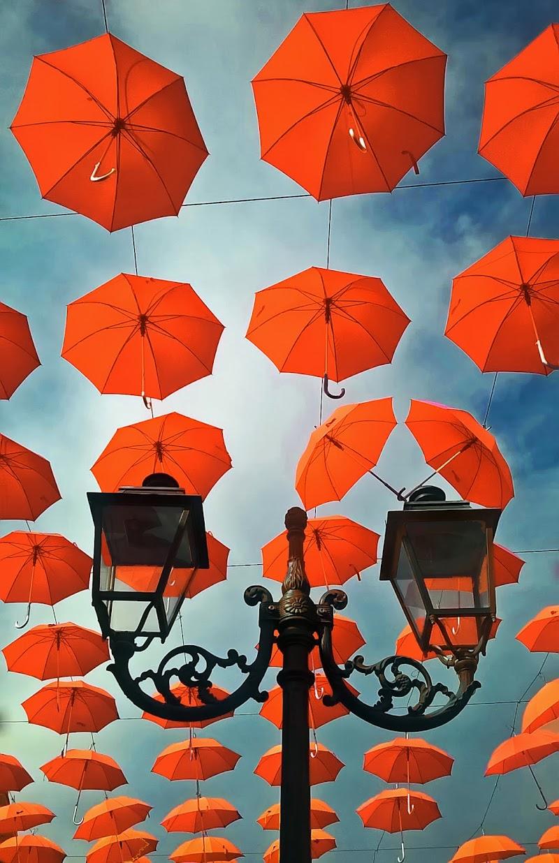 Umbrellas di tonino_de_rubeis