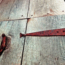rust and wood by Martin Stepalavich - Artistic Objects Still Life (  )
