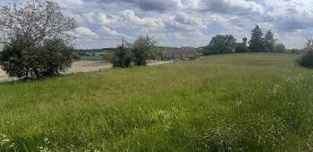 terrain à Montaigu-de-Quercy (82)