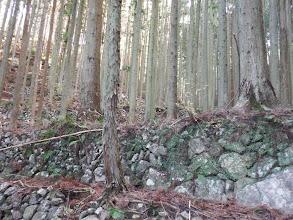 古い石垣の堰堤