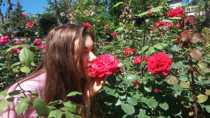 Roses di Monni