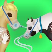 Farm Pregnancy Surgery