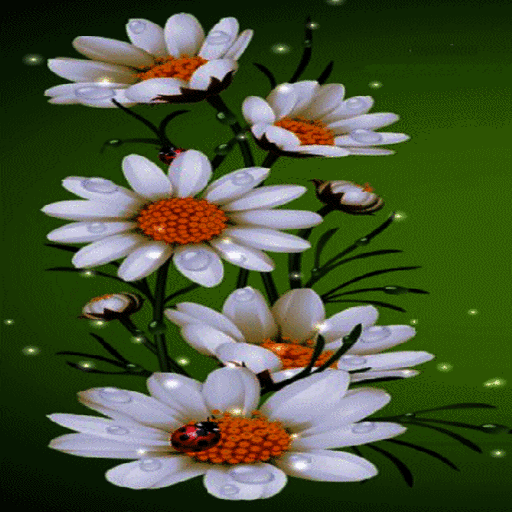 White Flowers Beauty LWP