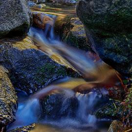 Alder Creek 1 by Danny Bruza - Nature Up Close Water ( alder creek, alpine village, water )