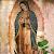 La Rosa de Guadalupe file APK for Gaming PC/PS3/PS4 Smart TV