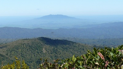 Looks at Tirohanga from Pirongia