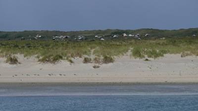 Vlieland camp site from the sea