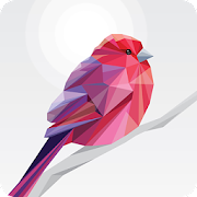 Low Poly Book - coloring book & art game by number