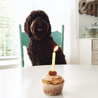 Healthy Peanut Butter Pupcakes