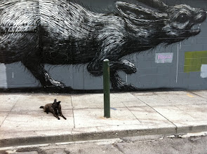 Photo: Malia can't chase this rabbit in San Francisco, CA