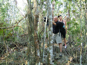 Photo: 2009 Green Travel Guides TV videoing Cayman Islands Ghost Orchid - Dendrophylax fawcettii, in bloom, June 3, 2009
