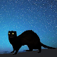 Ferret Night Camera Download for PC Windows 10/8/7
