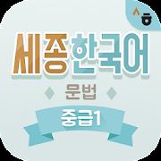 Sejong Korean Grammar -  Intermediate1