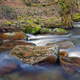 by Siniša Almaši - Nature Up Close Water ( water, up close, stream, nature, stone, forest, colora, view, landscape, light, rocks, depth, river )