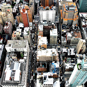by Jessica Lunn - City,  Street & Park  Skylines ( view from above, skyline, empire state building, new york city, maze, city )