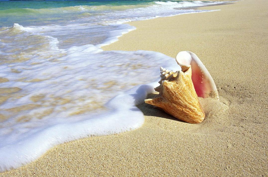 Азовское море - цены на отдых