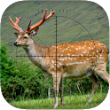 Deer Sniper: Hunting Game icon