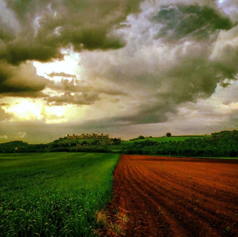 Tricolore agricolo di utente cancellato