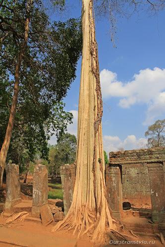 Прасаты храмового комплекса Кох Кер
