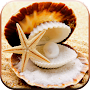 Pearl Of Sea Free LWP. APK icon