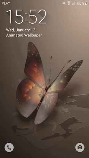 免費下載個人化APP|蝴蝶動畫壁紙 app開箱文|APP開箱王