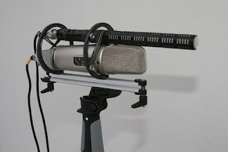 Photo: It can be interesting to use quiet mic like Rode NTG3 in this setup.