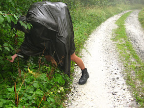 Photo: Ostatecznie olewamy deszcz i decydujemy się ruszyć ku Borówkowej.  Po drodze wykorzystujemy każdą okazję na degustację leśnych przysmaków.