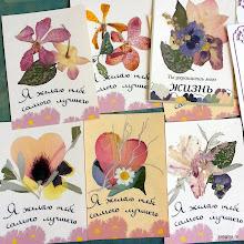 Photo: Карточки с гербарием в подарок!