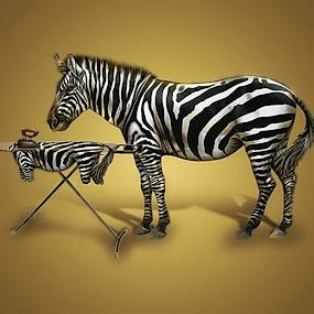 by Pako z Kanady - Digital Art Abstract ( lejno kravské, kick muse )