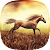 Horse Pictures Live Wallpaper file APK Free for PC, smart TV Download