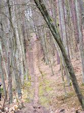 """Photo: Ul. 23 - Marca - Dolina Gołębiewska - szlak """"zielony - Skarszewski"""""""