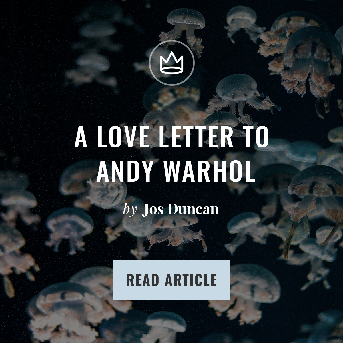 Designest Article Advertisement 2 Feed Post