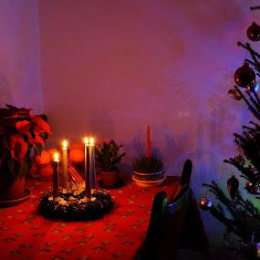 Christmas spirit by Igor Antolović - Public Holidays Christmas ( holiday lights )