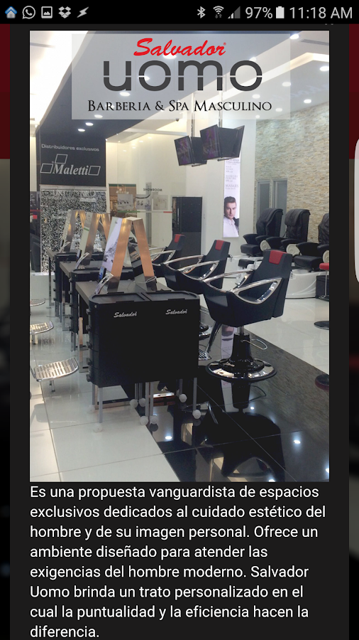 Salvador Hairdressing: captura de pantalla