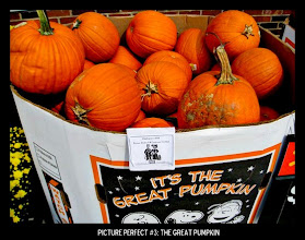 Photo: Point values for this target: 3 Points for 3 pumpkins of any type; 5 Points for 3 pumpkins in a patch; 7 Points for 3 carved pumpkins. Email your submission to contests@superficialgallery.com.