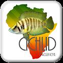 Cichlid Heaven icon