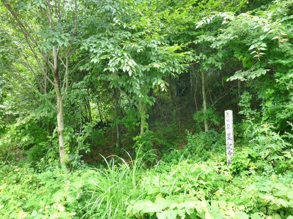 田束山に向かう途中に卒業記念植樹!?