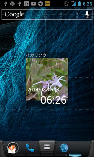 日めくり植物時計