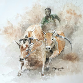Cow Race by Alfonso Rahardja - Painting All Painting