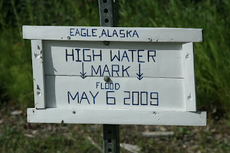 Photo: Yukon River. Eagle