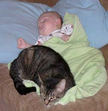 catandbaby