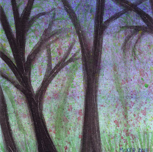 Photo: Forest.  