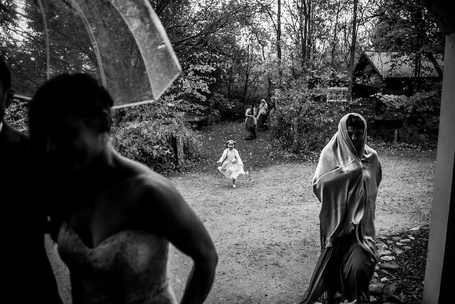 Wedding photographer Milan Lazic (wsphotography). Photo of 17.02.2019