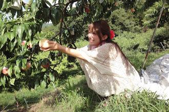 Photo: この桃 おいしそう。。。