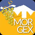 Discover Morgex icon