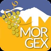 Discover Morgex