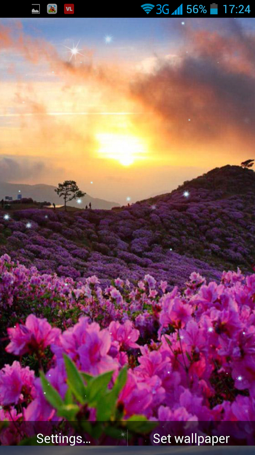 Spring sunrise live wallpaper android apps on google play for Sfondi primaverili
