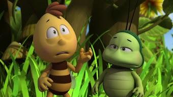 Greedy Frogs